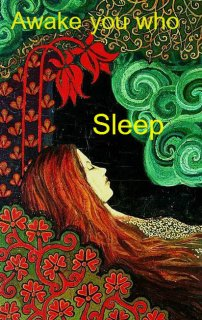 sleeping-beauty-sl-11
