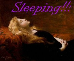 sleeping-beauty-sl-18